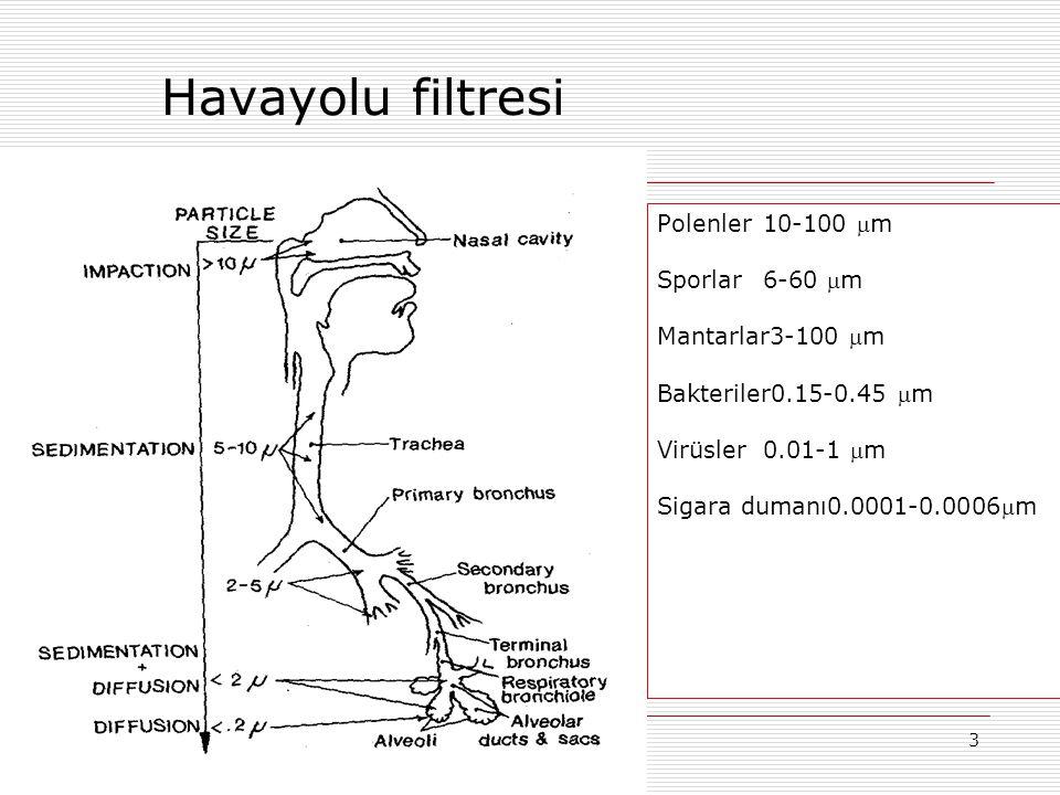 Havayolu filtresi Polenler 10-100 m Sporlar 6-60 m Mantarlar3-100 m
