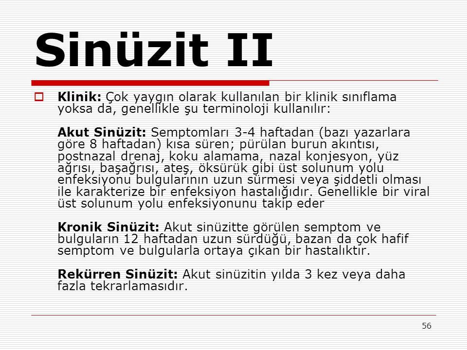 Sinüzit II