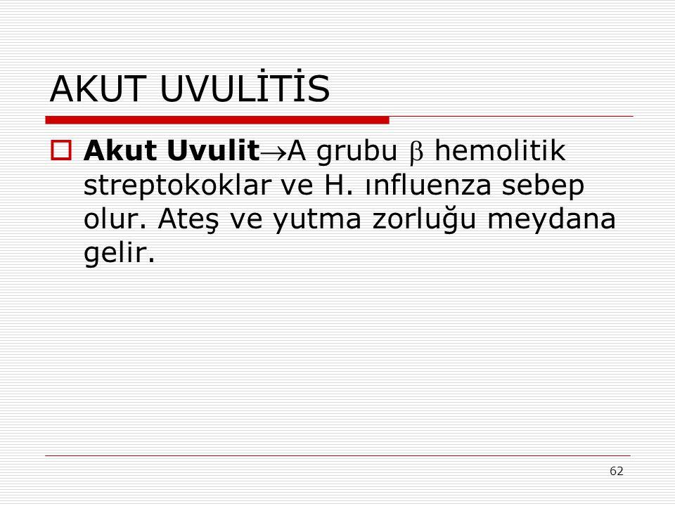AKUT UVULİTİS Akut UvulitA grubu  hemolitik streptokoklar ve H.