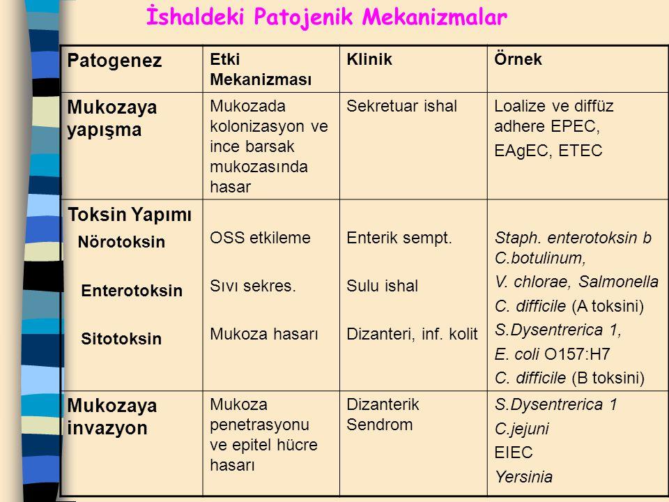İshaldeki Patojenik Mekanizmalar