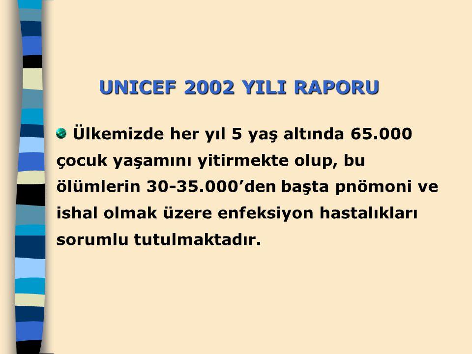 UNICEF 2002 YILI RAPORU