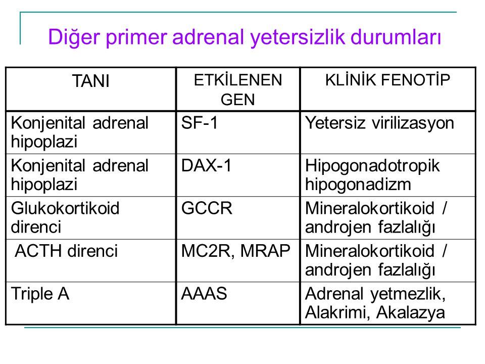 Diğer primer adrenal yetersizlik durumları