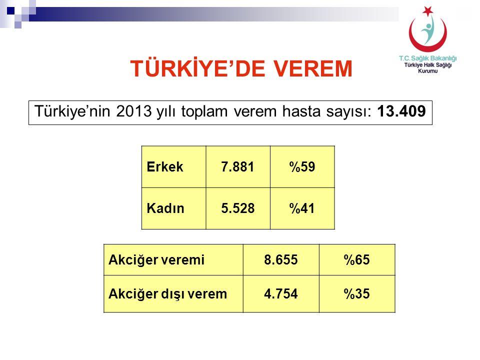 Türkiye'nin 2013 yılı toplam verem hasta sayısı: 13.409