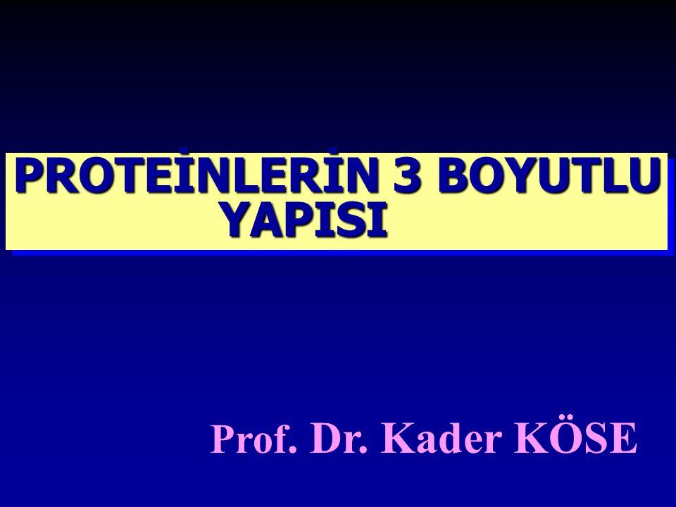 PROTEİNLERİN 3 BOYUTLU YAPISI Prof. Dr. Kader KÖSE