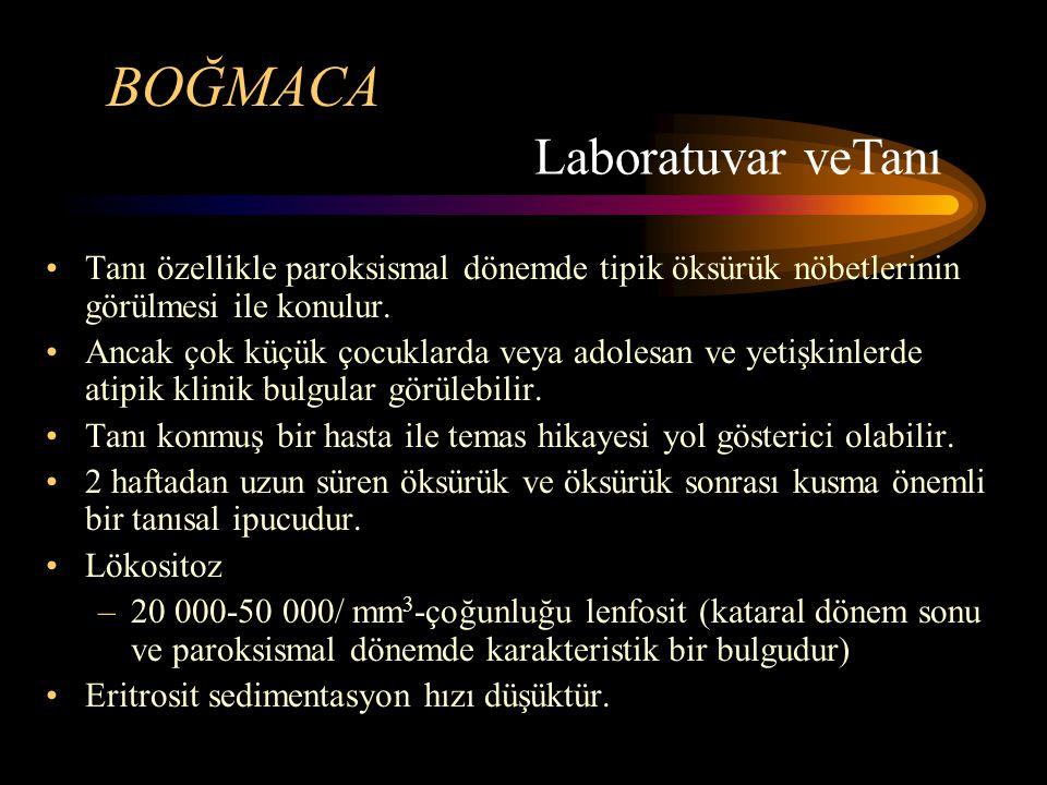 BOĞMACA Laboratuvar veTanı