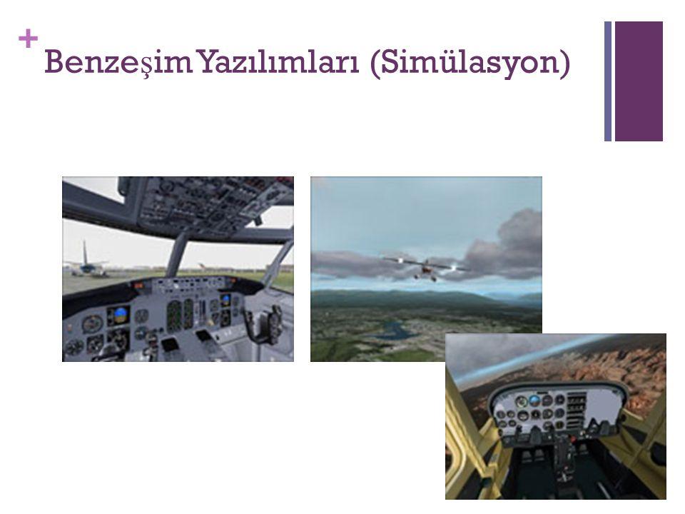 Benzeşim Yazılımları (Simülasyon)