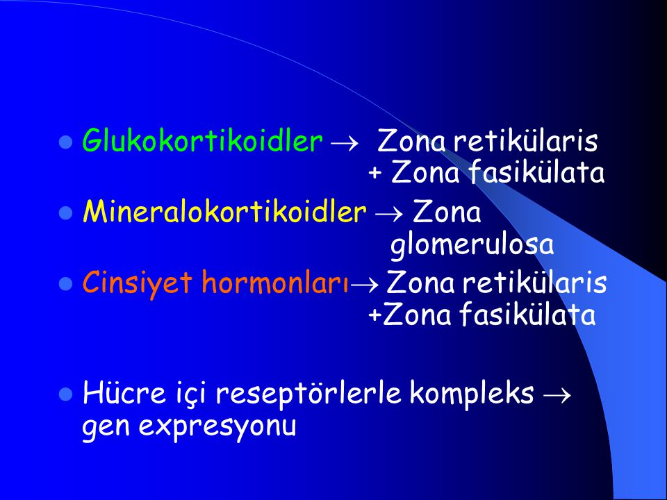 Glukokortikoidler  Zona retikülaris + Zona fasikülata