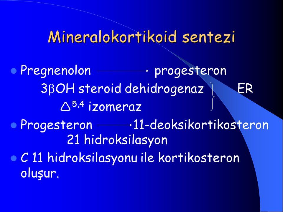 Mineralokortikoid sentezi