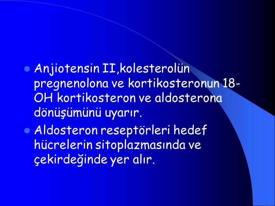 Anjiotensin II,kolesterolün pregnenolona ve kortikosteronun 18-OH kortikosteron ve aldosterona dönüşümünü uyarır.