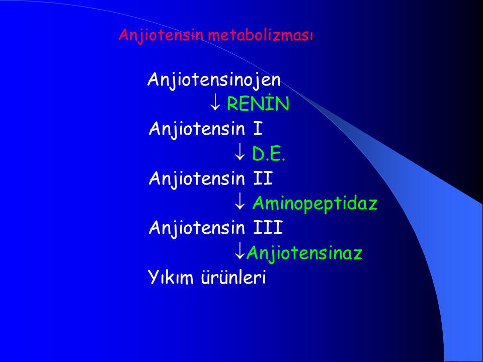  RENİN Anjiotensin I  D.E. Anjiotensin II  Aminopeptidaz
