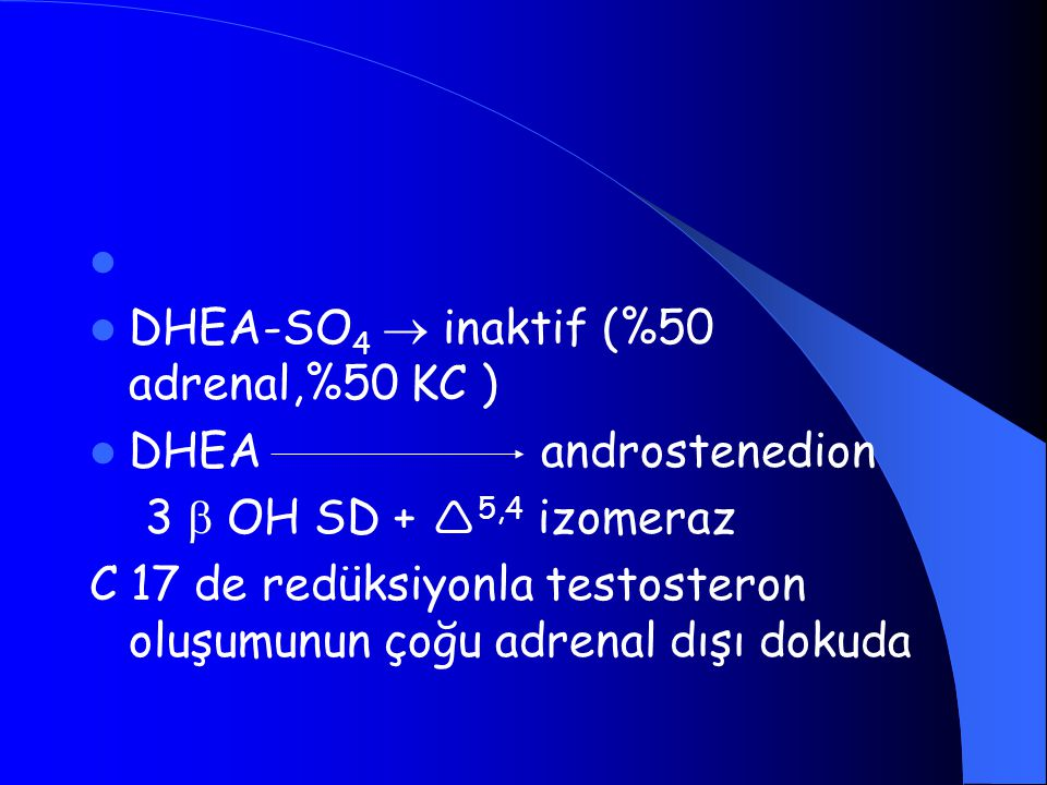 DHEA-SO4  inaktif (%50 adrenal,%50 KC )