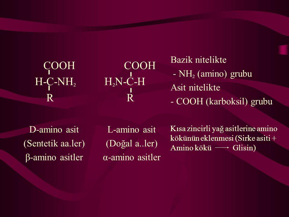 COOH H-C-NH2 R H2N-C-H Bazik nitelikte - NH2 (amino) grubu