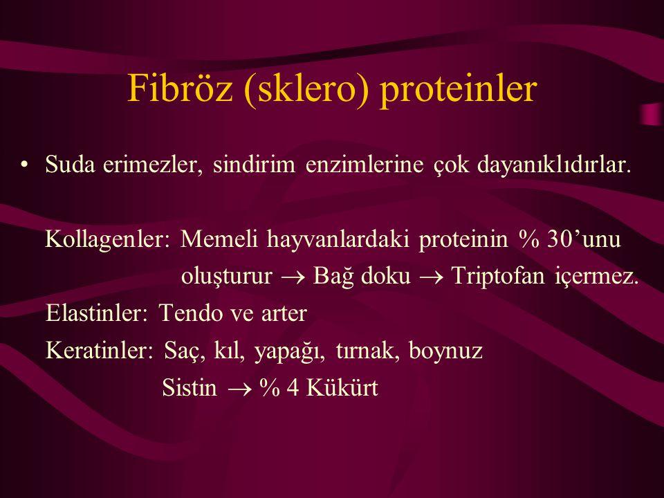 Fibröz (sklero) proteinler