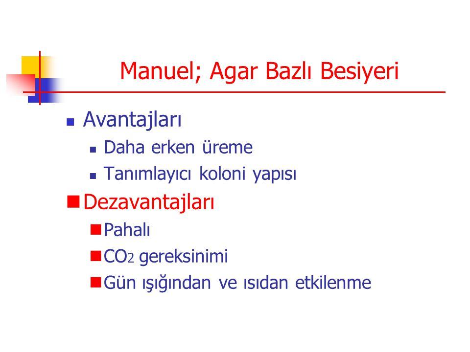 Manuel; Agar Bazlı Besiyeri