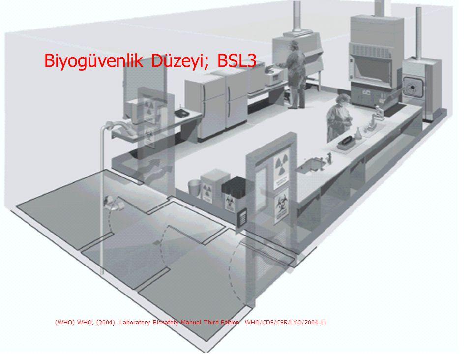 Biyogüvenlik Düzeyi; BSL3