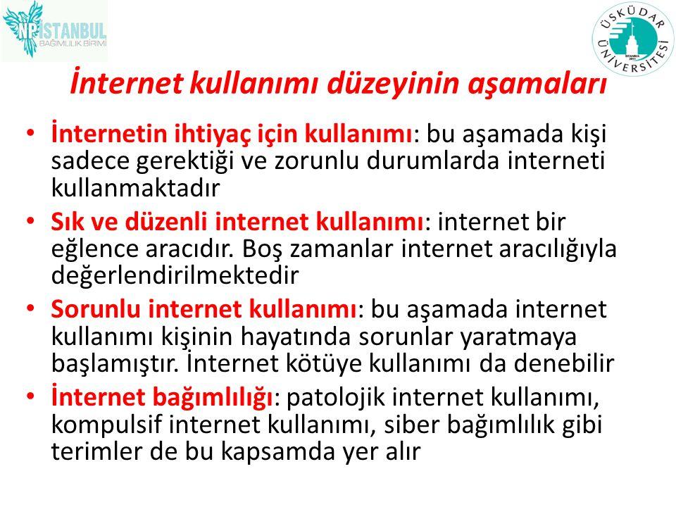 İnternet kullanımı düzeyinin aşamaları