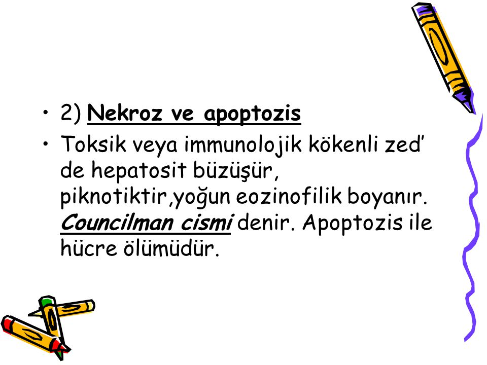 2) Nekroz ve apoptozis