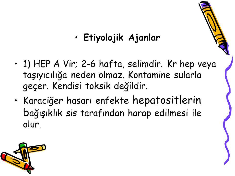 Etiyolojik Ajanlar 1) HEP A Vir; 2-6 hafta, selimdir. Kr hep veya taşıyıcılığa neden olmaz. Kontamine sularla geçer. Kendisi toksik değildir.