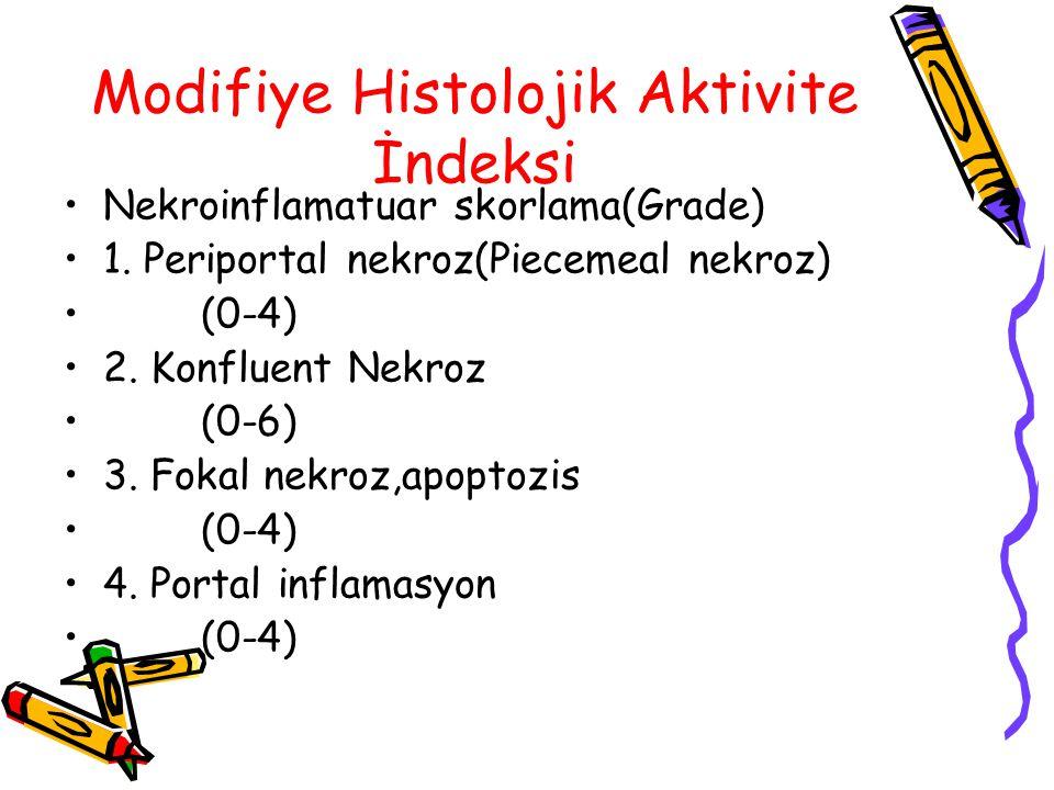 Modifiye Histolojik Aktivite İndeksi