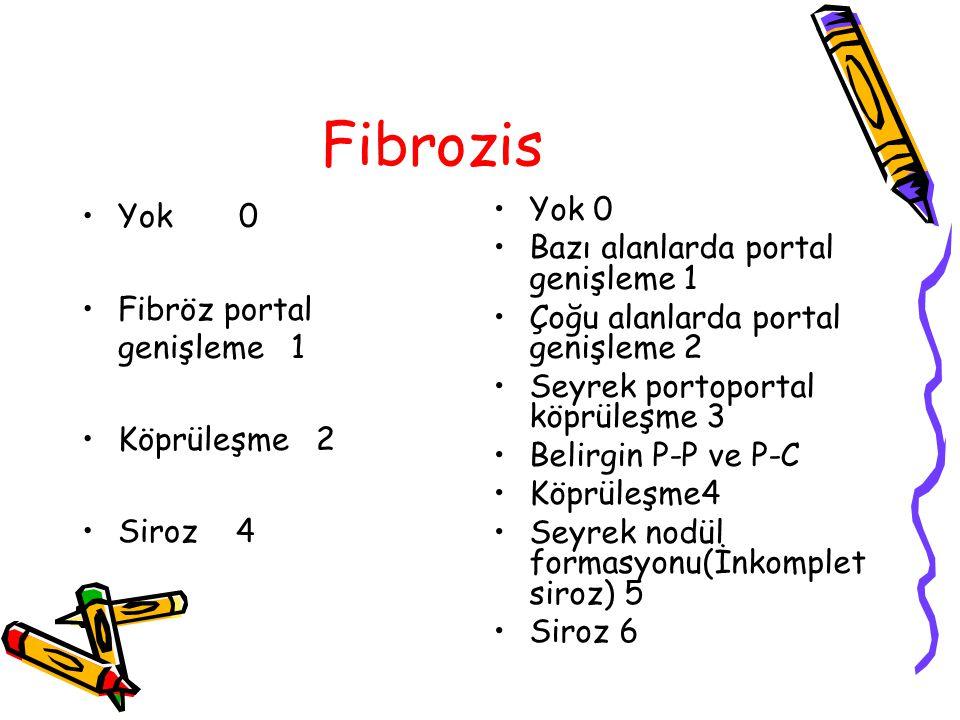 Fibrozis Yok 0 Fibröz portal genişleme 1 Köprüleşme 2 Siroz 4 Yok 0