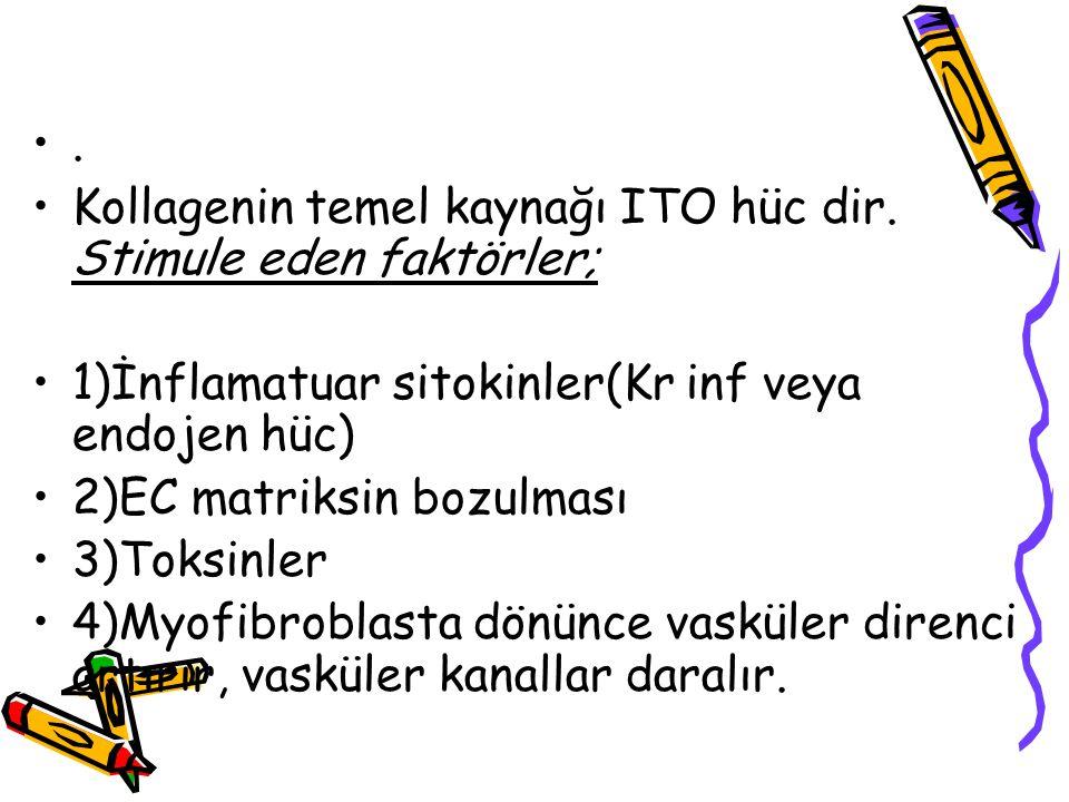 . Kollagenin temel kaynağı ITO hüc dir. Stimule eden faktörler; 1)İnflamatuar sitokinler(Kr inf veya endojen hüc)