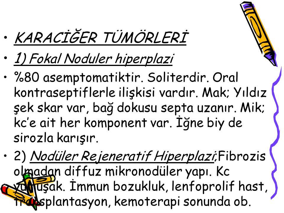 1) Fokal Noduler hiperplazi