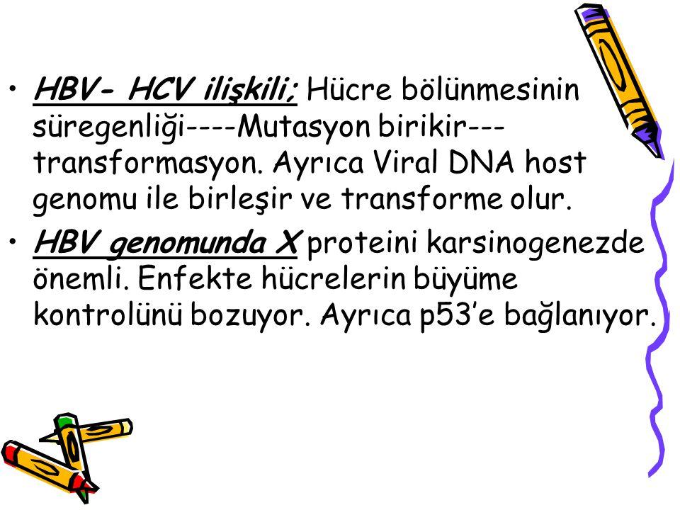HBV- HCV ilişkili; Hücre bölünmesinin süregenliği----Mutasyon birikir---transformasyon. Ayrıca Viral DNA host genomu ile birleşir ve transforme olur.