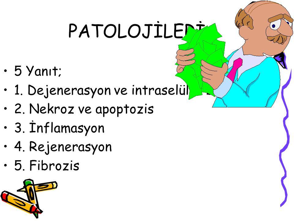 PATOLOJİLERİ 5 Yanıt; 1. Dejenerasyon ve intraselüler birikim