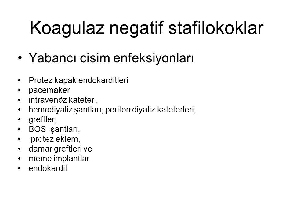 Koagulaz negatif stafilokoklar