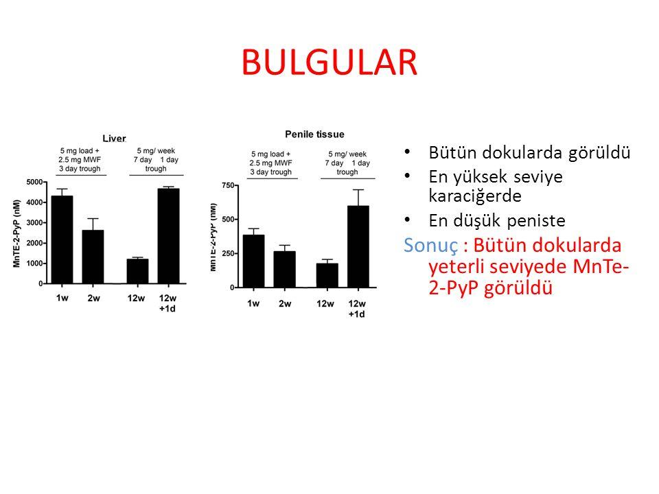 BULGULAR Sonuç : Bütün dokularda yeterli seviyede MnTe-2-PyP görüldü