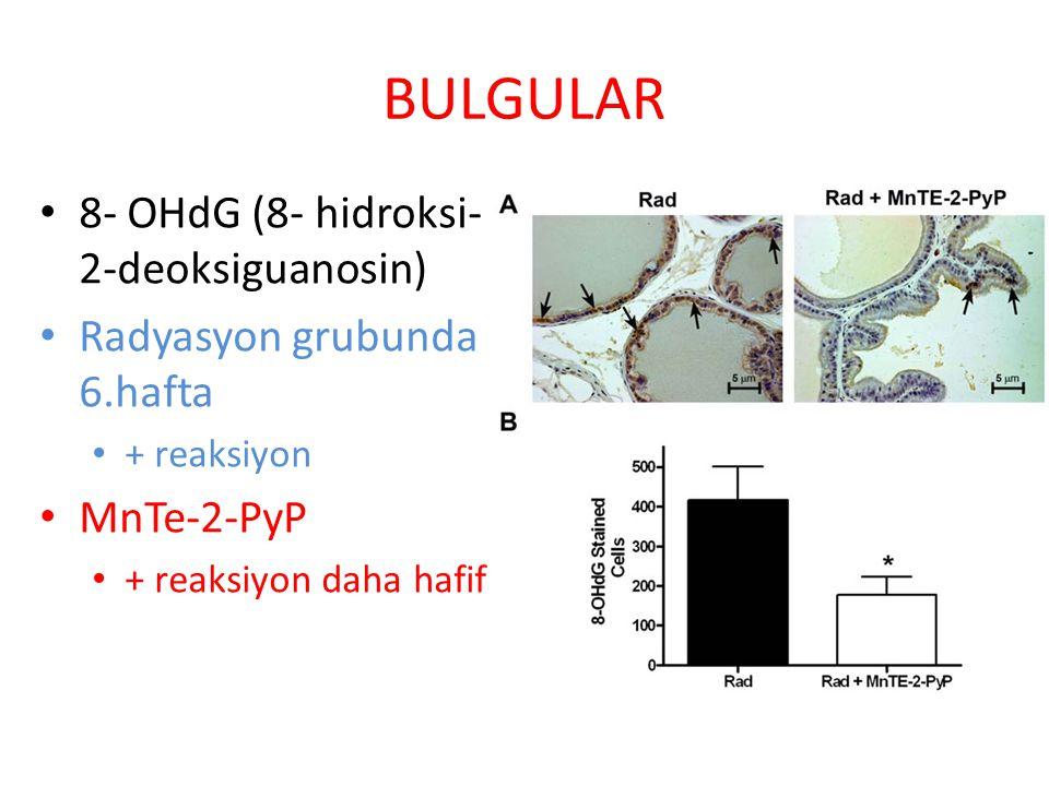 BULGULAR 8- OHdG (8- hidroksi-2-deoksiguanosin)