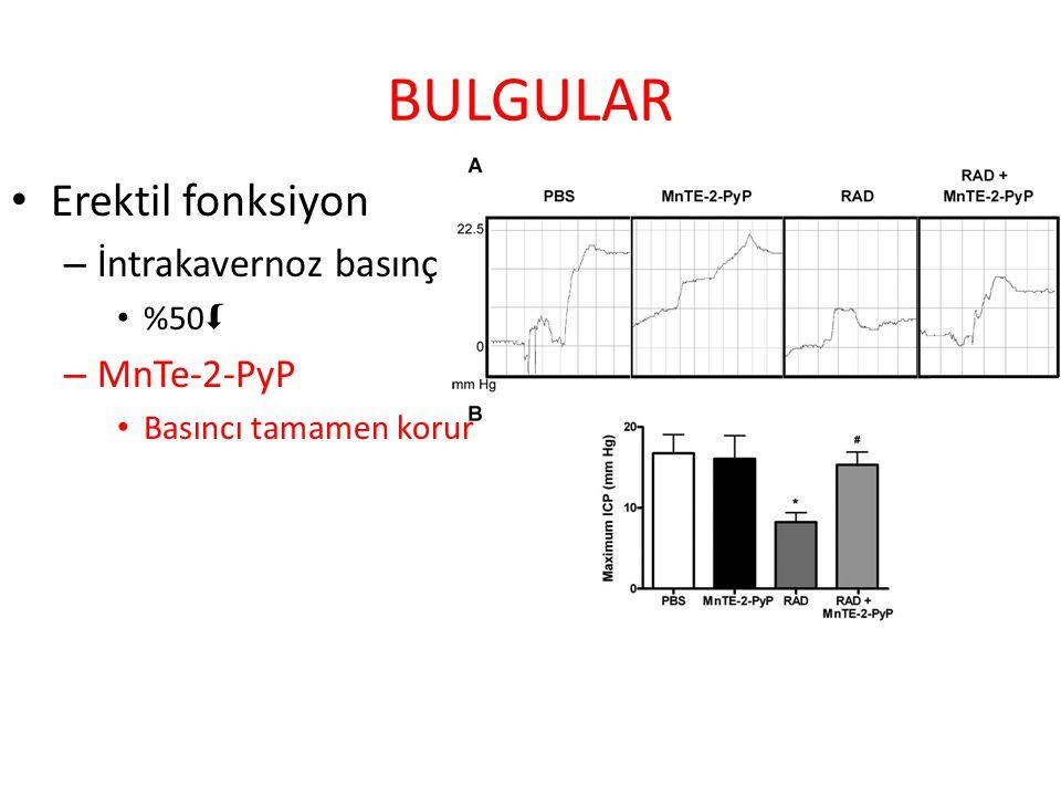 BULGULAR Erektil fonksiyon İntrakavernoz basınç MnTe-2-PyP %50