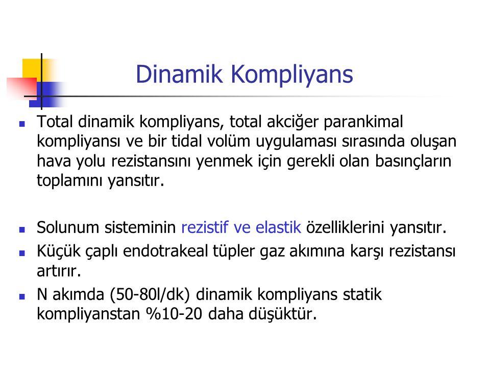Dinamik Kompliyans