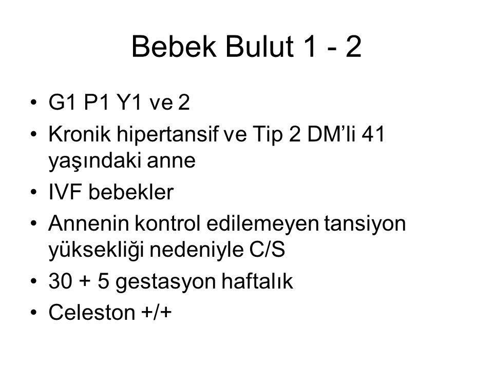 Bebek Bulut 1 - 2 G1 P1 Y1 ve 2. Kronik hipertansif ve Tip 2 DM'li 41 yaşındaki anne. IVF bebekler.