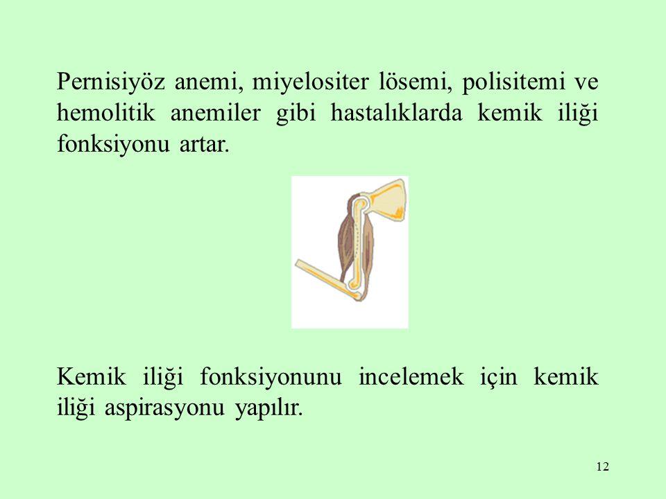 Pernisiyöz anemi, miyelositer lösemi, polisitemi ve hemolitik anemiler gibi hastalıklarda kemik iliği fonksiyonu artar.