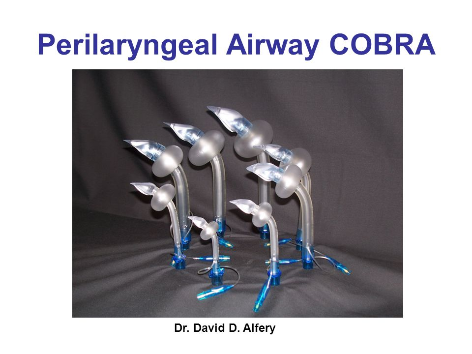 Perilaryngeal Airway COBRA
