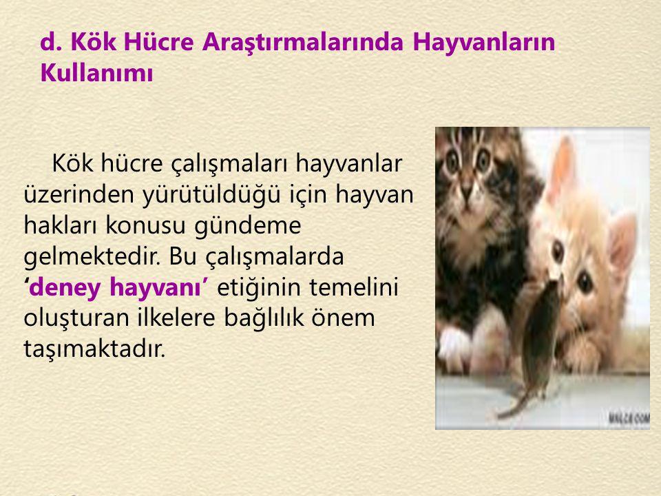 d. Kök Hücre Araştırmalarında Hayvanların Kullanımı