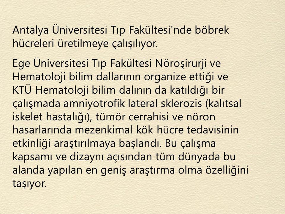 Antalya Üniversitesi Tıp Fakültesi nde böbrek hücreleri üretilmeye çalışılıyor.