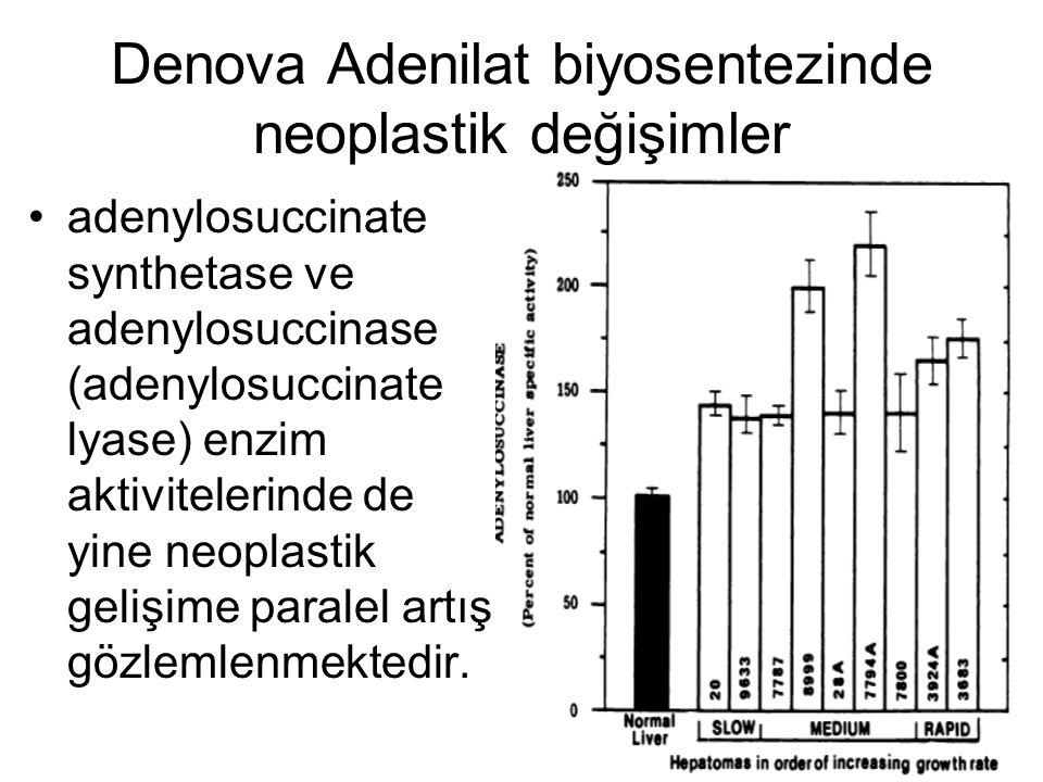 Denova Adenilat biyosentezinde neoplastik değişimler