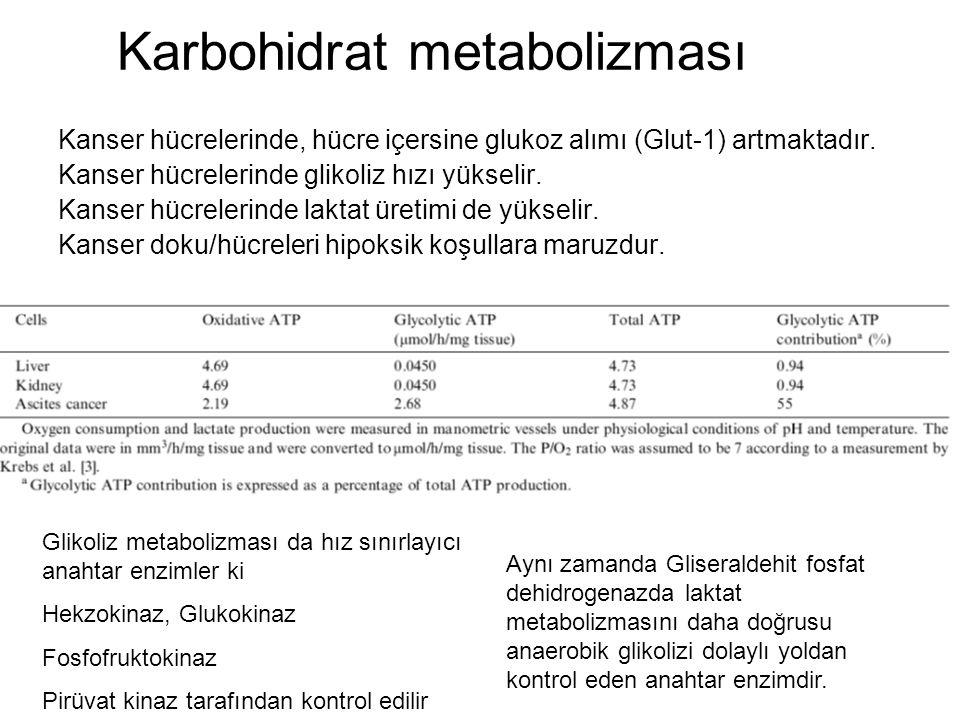 Karbohidrat metabolizması