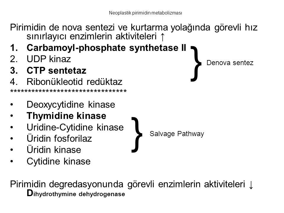 Neoplastik pirimidin metabolizması