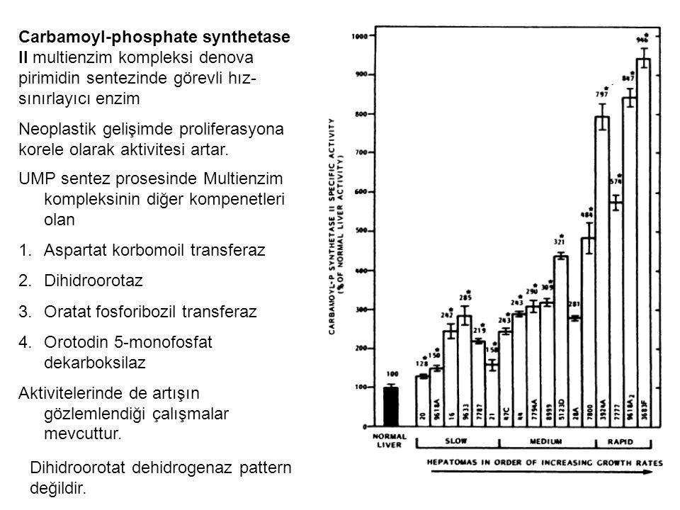 Carbamoyl-phosphate synthetase II multienzim kompleksi denova pirimidin sentezinde görevli hız-sınırlayıcı enzim