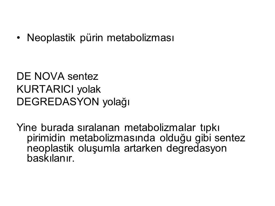 Neoplastik pürin metabolizması
