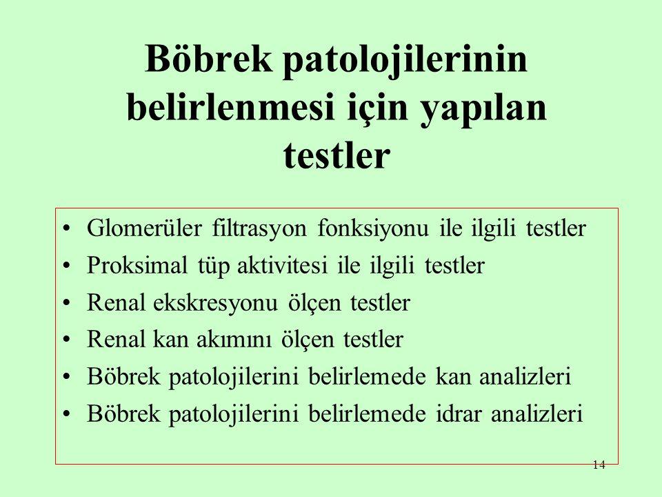 Böbrek patolojilerinin belirlenmesi için yapılan testler