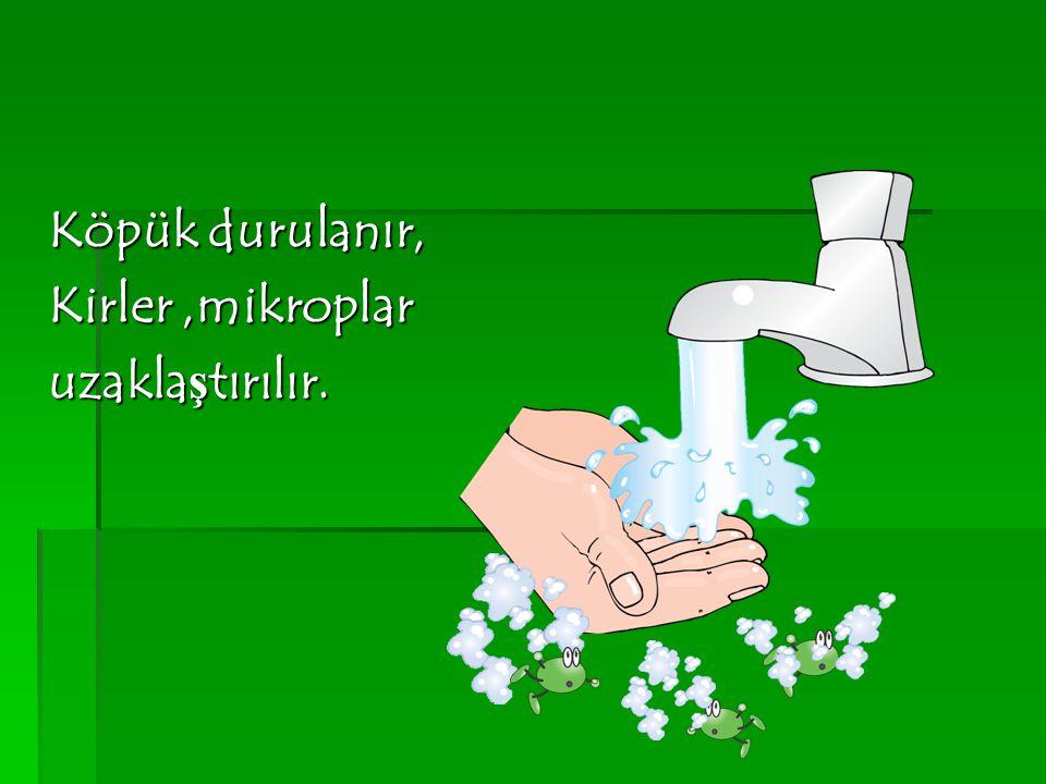 Köpük durulanır, Kirler ,mikroplar uzaklaştırılır.
