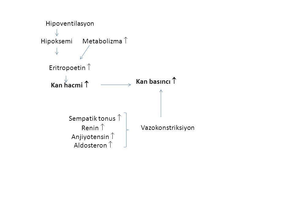Hipoksemi Metabolizma 
