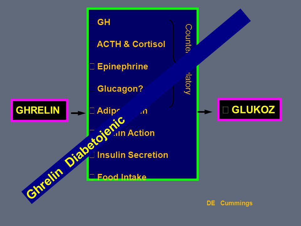 Ghrelin Diabetojenic ↑ GLUKOZ GHRELIN ↑ GH ↑ ACTH & Cortisol