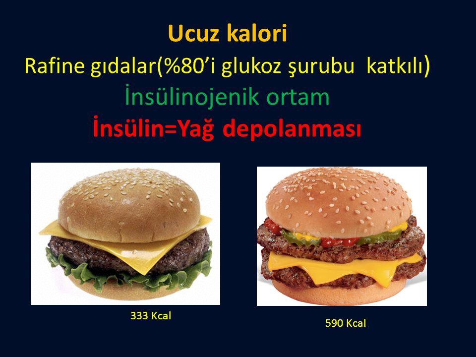 Ucuz kalori Rafine gıdalar(%80'i glukoz şurubu katkılı) İnsülinojenik ortam İnsülin=Yağ depolanması
