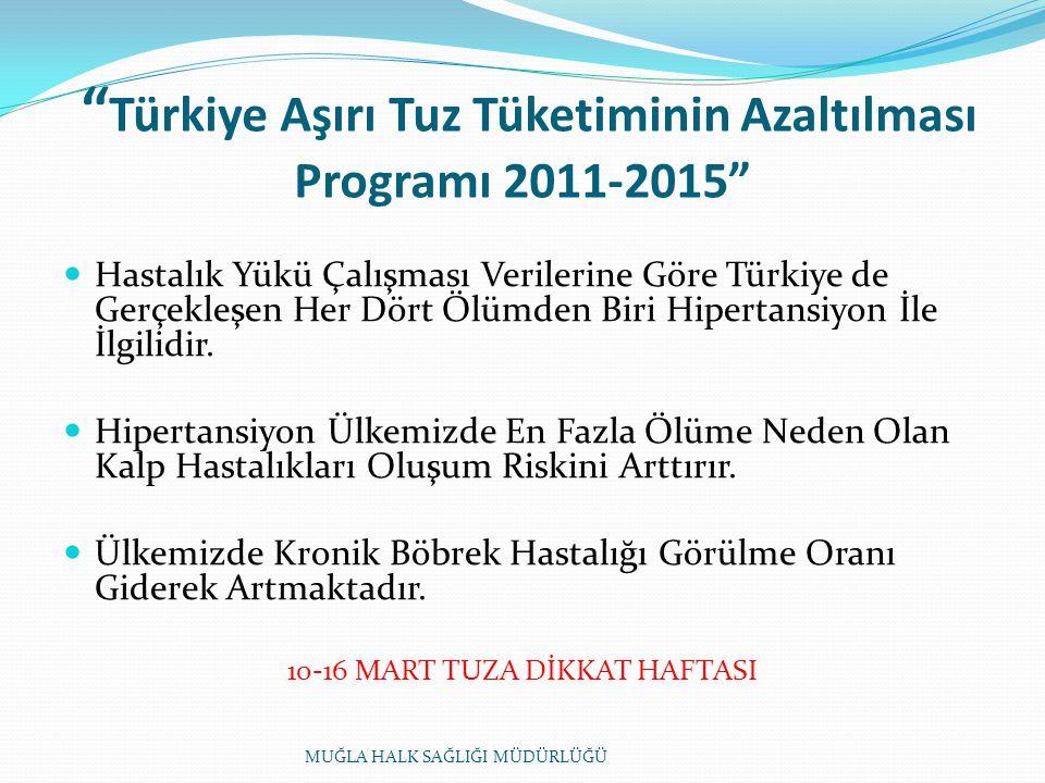 Türkiye Aşırı Tuz Tüketiminin Azaltılması Programı 2011-2015