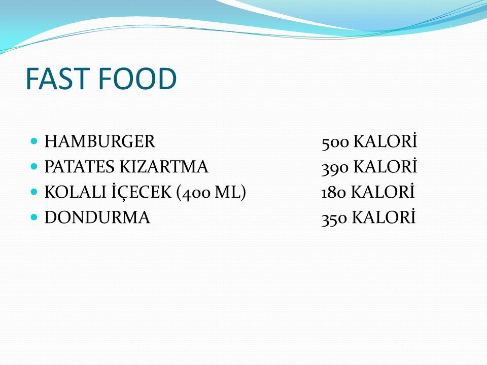 FAST FOOD HAMBURGER 500 KALORİ PATATES KIZARTMA 390 KALORİ